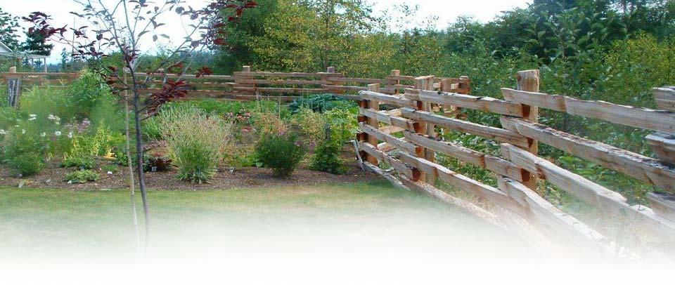 Split Cedar Single Nail-Up Fence
